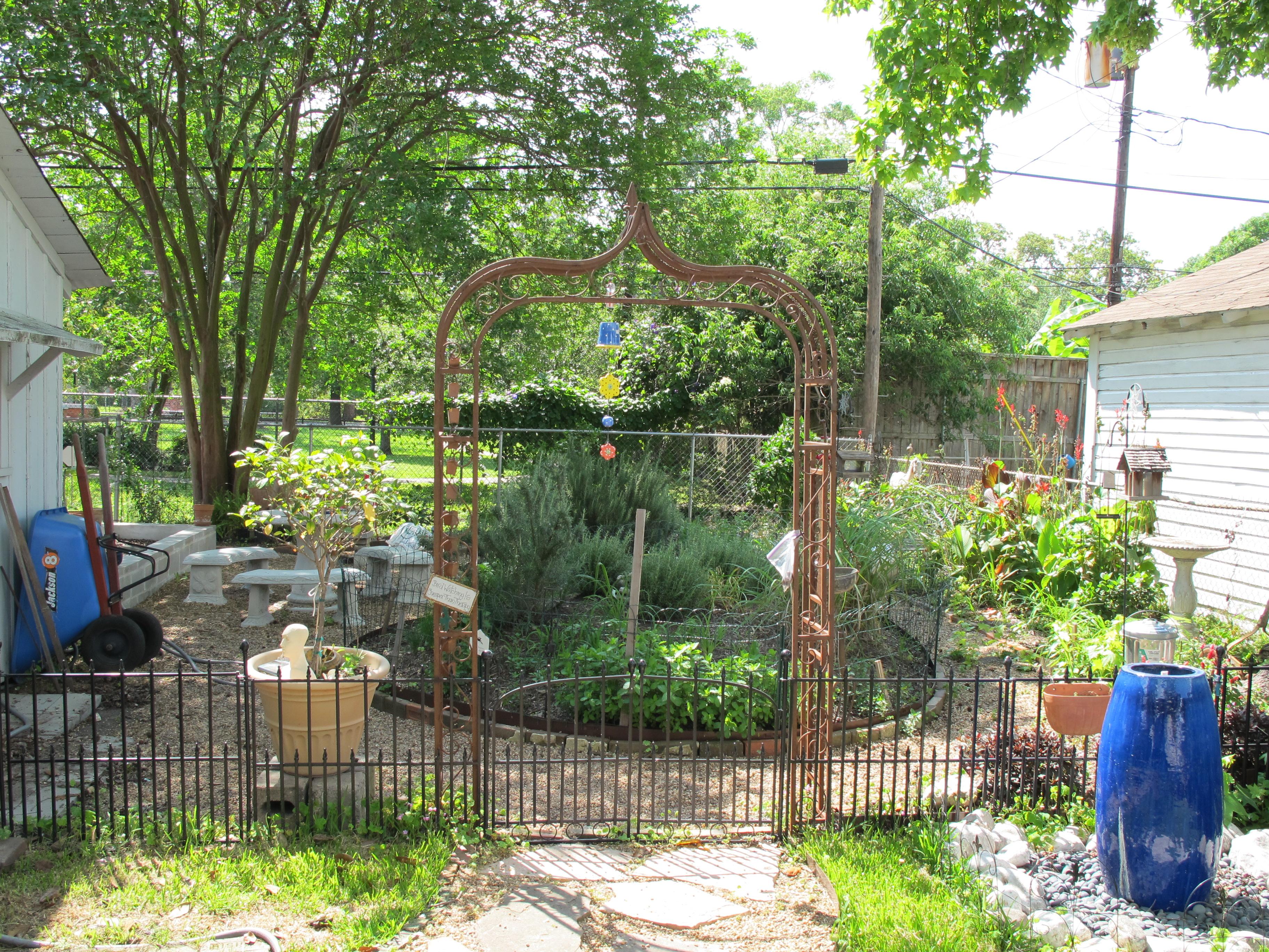 Backyard Herb Garden Design : love to garden My backyard herb garden is an ever changing wonder