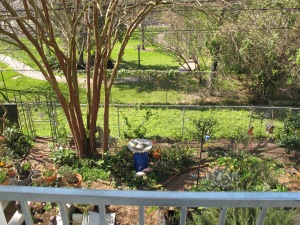 View from the staircase entrance into my art studio.  I can view my backyard garden and the neighborhood park.